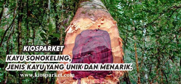 kayu sonokeling